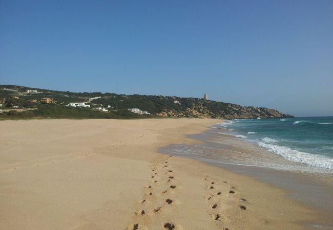 Barbaria - Playa Faro Camarinal