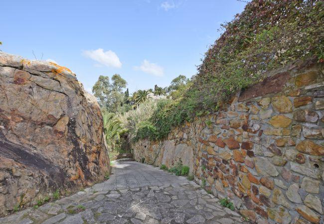 Entre Rocas - Acceso parking trasero