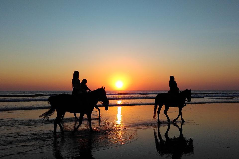 Paseos a caballo en Zahara